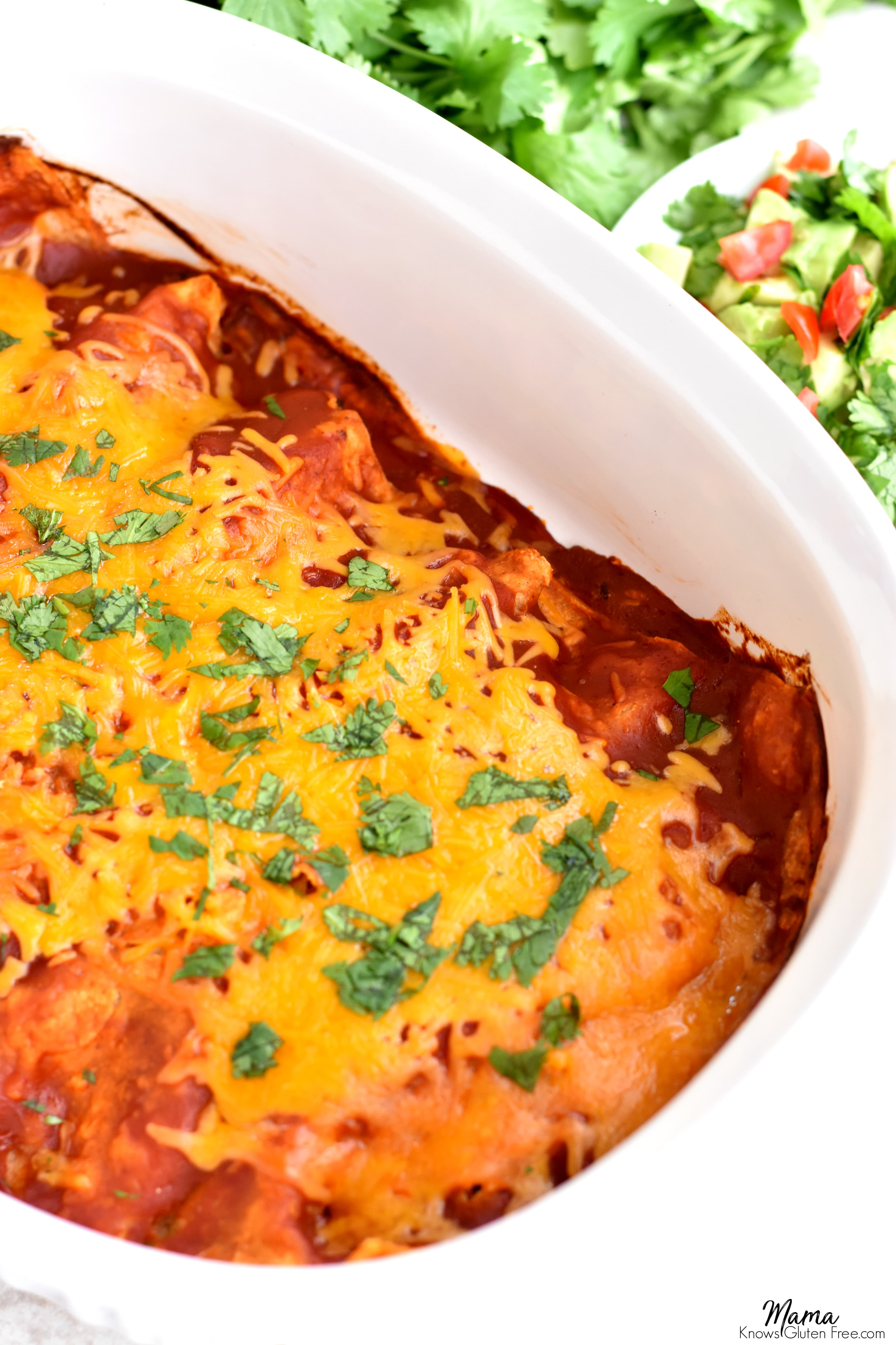 casserole dish of gluten-free beef and cheese enchiladas with salsa and cilantro in the background