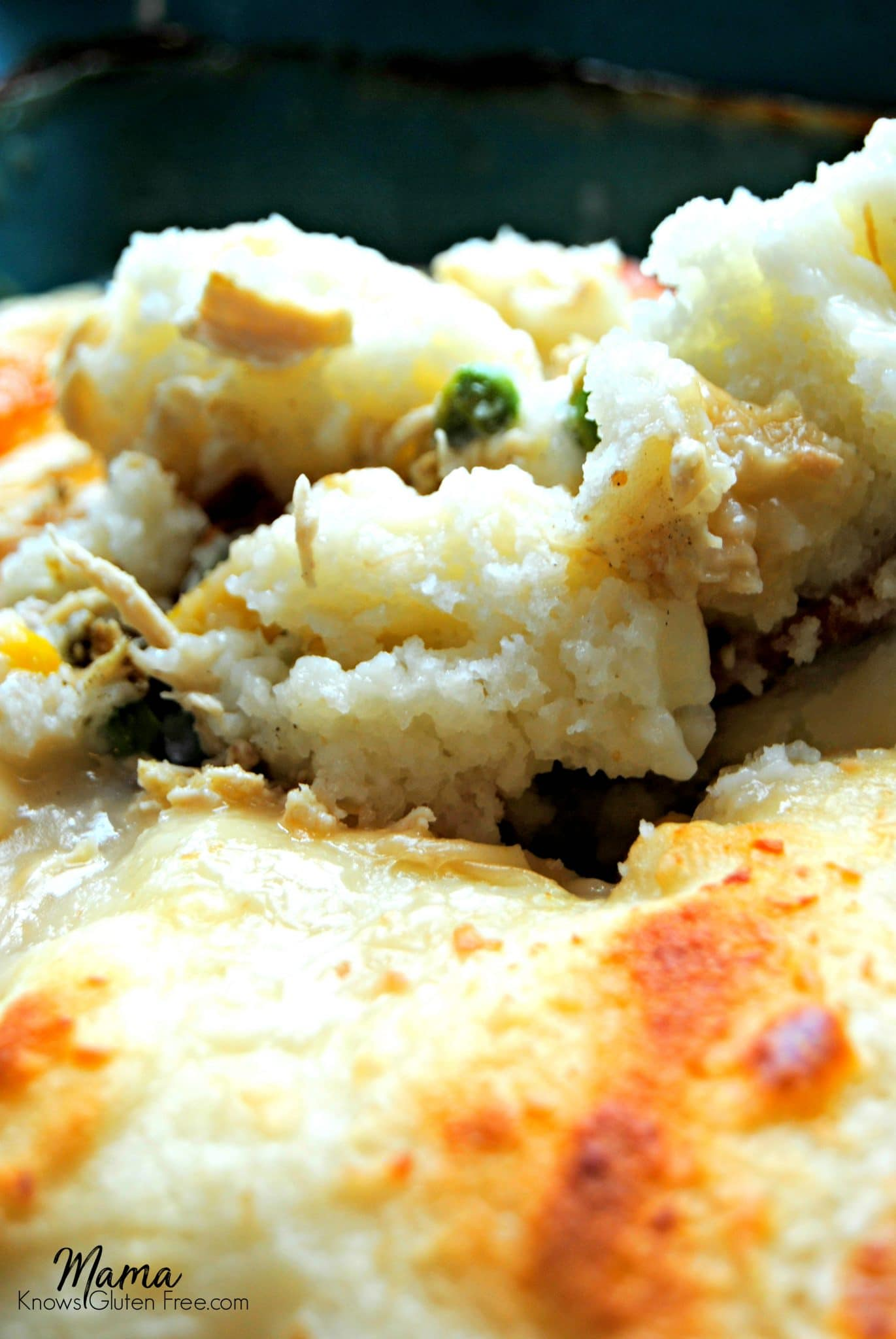 close up of a pan of gluten-free chicken and dumplings casserole