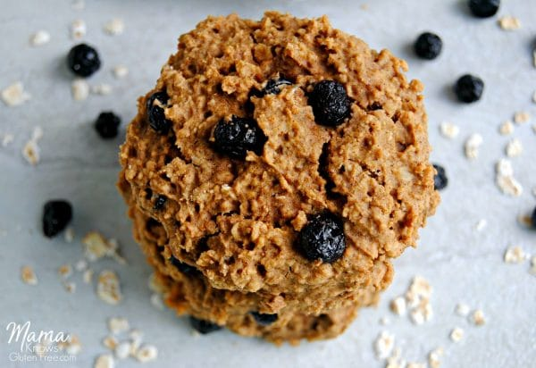 Blueberry Oatmeal Cookies {Gluten-Free, Dairy-Free, No Refined Sugar}