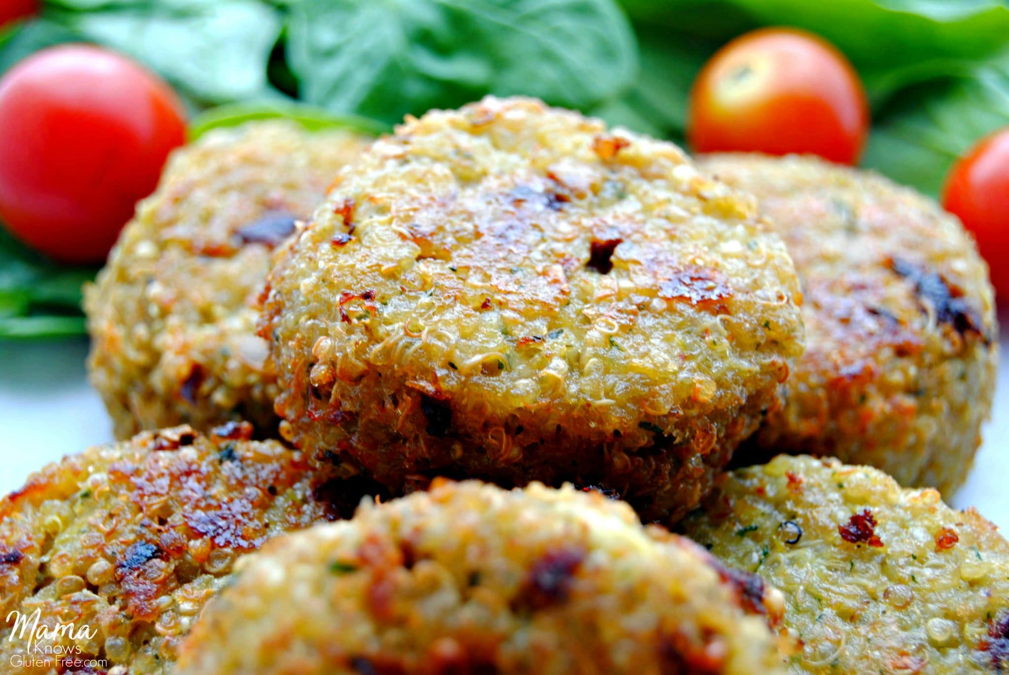 Pan Fried Quinoa Cakes