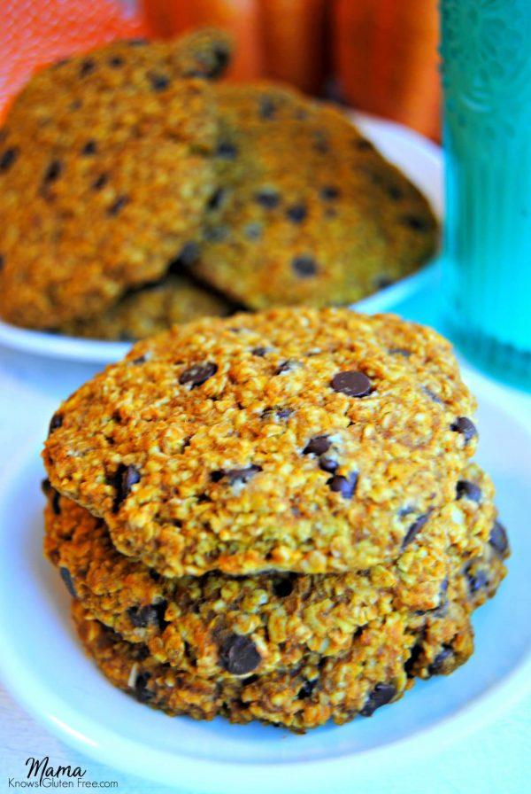 Gluten-Free Pumpkin Breakfast Cookies {Dairy-Free}