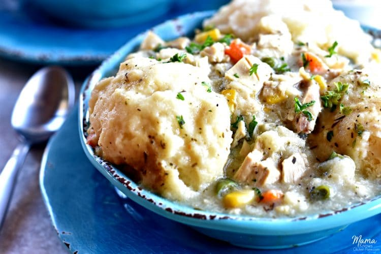 Gluten-Free Chicken and Dumplings {Dairy-Free Option}
