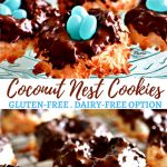 gluten-free coconut nest cookies Pinterest pin 1a