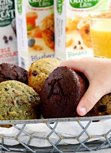 Garden Lites Muffins Review {Gluten-Free, Dairy-Free}