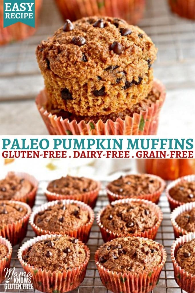 Paleo pumpkin muffins Pinterest pin 2b
